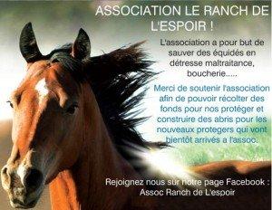 Bienvenu sur notre blog le-ranch-300x232